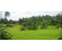 VASAI EAST OPEN PLOT AVAILABLE FOR SALE