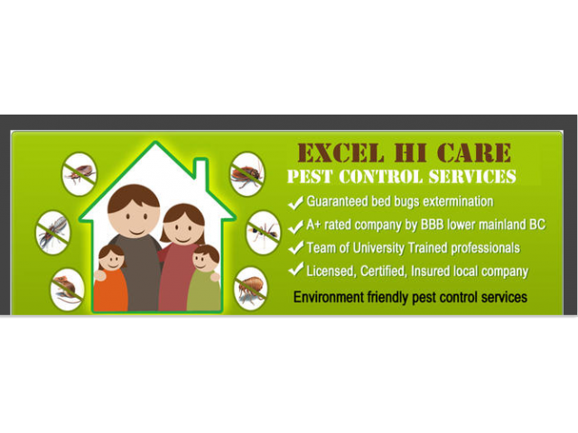 Pest Control Service in Ncr