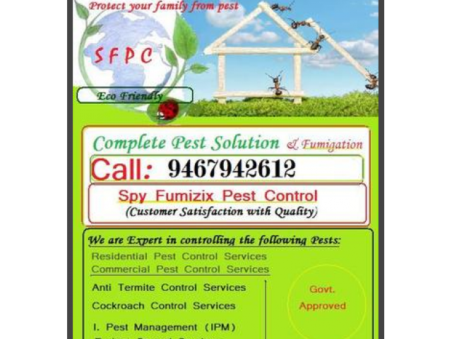 Quality Pest Control Solution All Sectors Faridabad