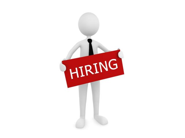 MNC Company Required Candidates For Paytm Process
