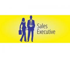 Need sales executive