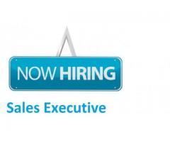 We required experienced sales executive