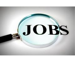 immediate joining for  accountant