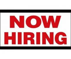 Vacancy for office assistance job