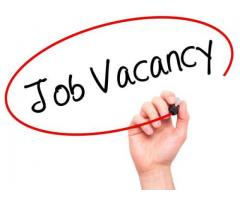 Required sales person
