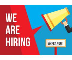 Boys and girls required in sales executive