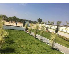 vensai temple tree plots for sale in chandapura