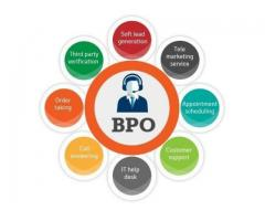 BPO Telecaller Hindi for Domestic BPO