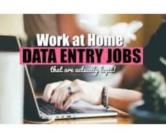 Urgent required for data entry jobs