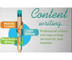 I am a freelance content writer and can write all type of content.