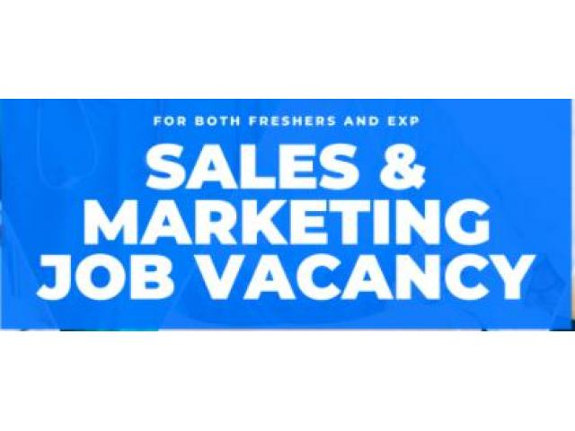 sales and marketing manager jobs