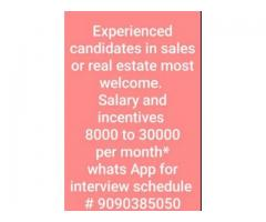 Sales executive & sales managers requirement for real estate company |