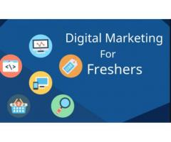 jobs vacancy for digital marketing jobs