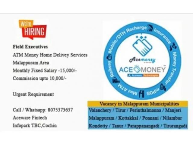 sales & marketing executive jobs for Micro ATM Services