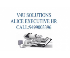 V4U SOLUTION OPENING NON-VOICE JOBS AT CHENNAI