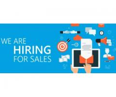 Jobs openings for sales executive jobs