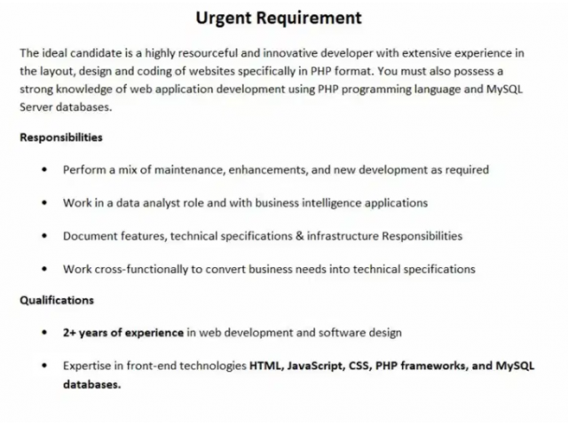 2+ years of experience in software developer jobs