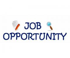 Jobs vacancy for data entry operator jobs