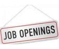 Vacancy for freelance content writer jobs