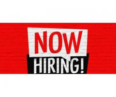 ₹ 8000 - 12000 Monthly | Looking for a Web and Graphic Designer freelance developer website