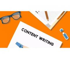 technical content writer jobs for freshers