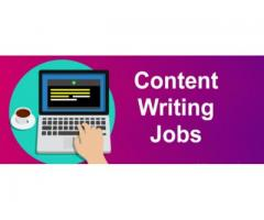 seo content writer jobs for freshers