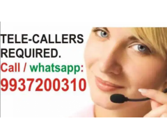 ₹ 5000 - 8000 | Monthly telecaller and telecalling job